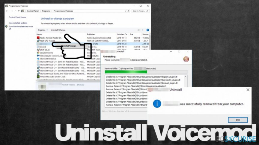 Voicemod removal